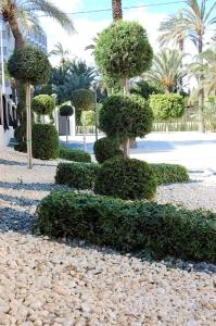 decorar jardin con piedras, decorar jardin piedras blancas, grava decorativa, canto rodado