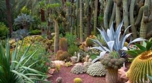xerojardin, huerto del cura, xeroscape, jardin zen, tipos de jardin, jardin exterior, piedras jardin