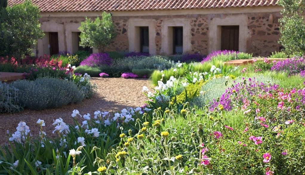 Dise o de jardines xerofilos la xerojardiner a for Arboles decorativos para jardin
